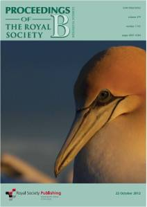 Gannet cover low resolution